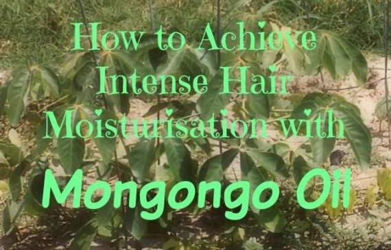 How to Achieve Intense Hair Moisturisation with Mongongo oil