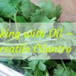 Cooking with Oil – The Versatile Cilantro oil