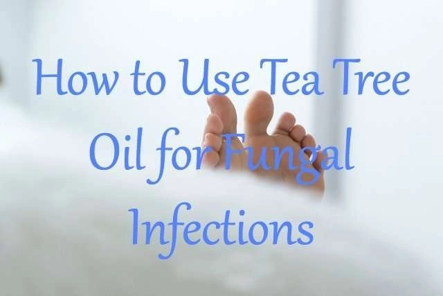 how-to-treat-fungal-infections-with-tea-tree-oil