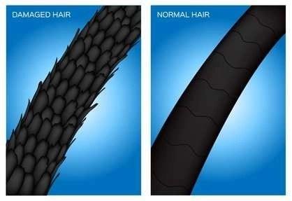 damaged hair vs normal haira