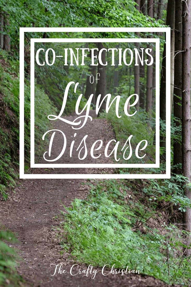 Lyme disease is an epidemic. The CDC reports 300,000 new cases every year, and that's only the ones that are diagnosed. We know that there are a lot of cases that go undiagnosed because Lyme testing (Borrelia burgdorferi) is so unreliable, so the number of people who contract it every year is likely much higher. It is called