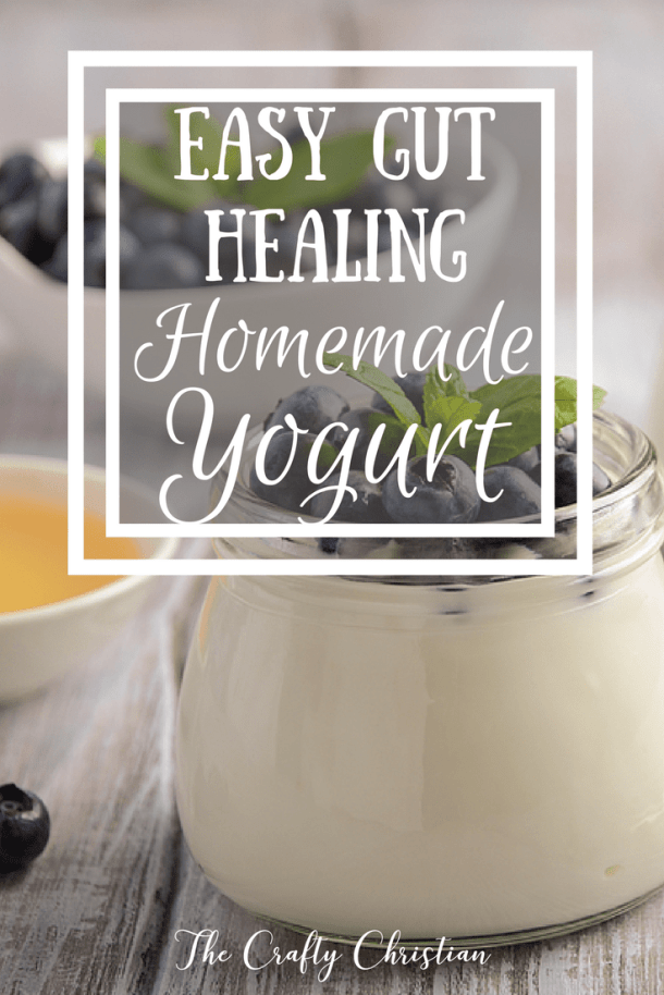 Wanting to learn how to make the best homemade yogurt?  This recipe is foolproof, and will become a staple in your refrigerator and your gut!