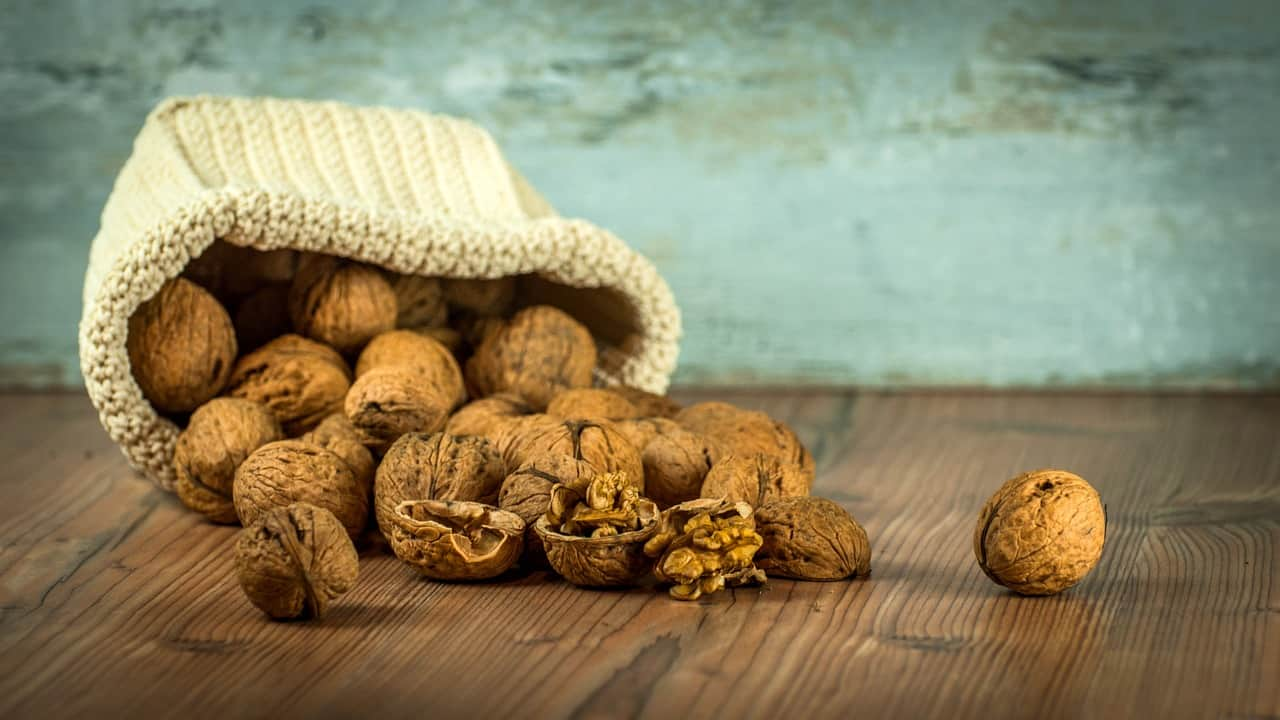 cloth bag on its side with walnuts rolling out