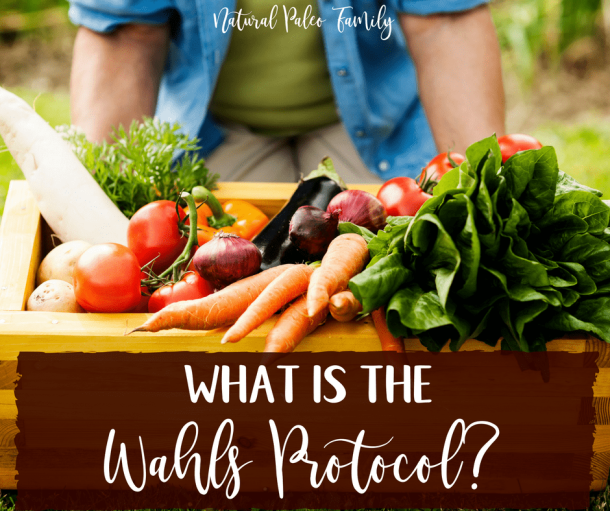 What is the Wahls Protocol? Reversing Autoimmune Disease with Food