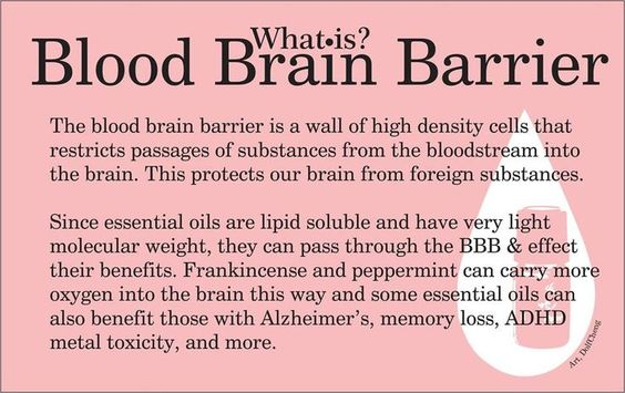What is the Blood Brain Barrier Wall?