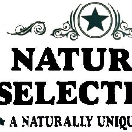 Natural Selections a quaint country store in Gruene Texas