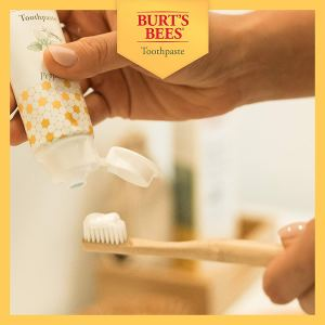 Burt's Bees Toothpaste With Mint Medley 1