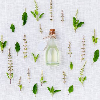 Les plantes pour la santé naturelle