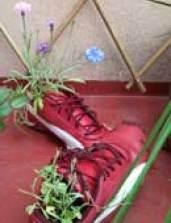 chaussure de récup