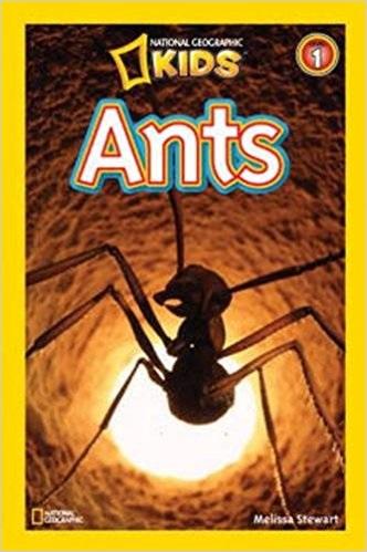 I Hug My Ant Farm Shirt Men S Premium T