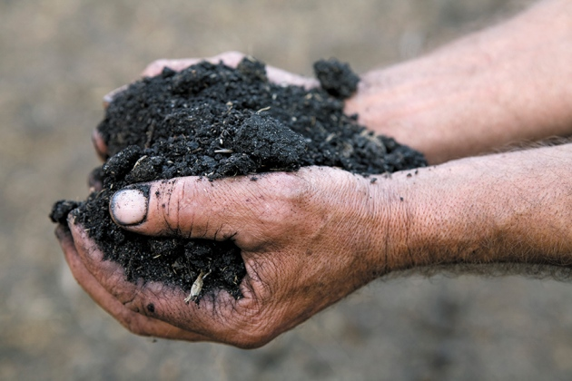 Image result for handful of soil images