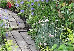 Garden Path and border