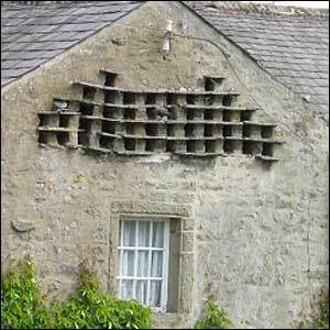 Dovecote - Picture courtesy of Yorkshire Dales National Park Authority