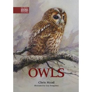 Owls by Chris Mead