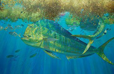 Mark Susinno Underwater Game Fish Art Amp Fly Fishing Scenes