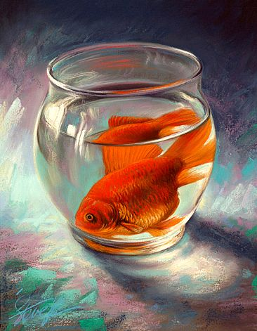 Glass houses - Domestic goldfish-Domestic goldfish ....all alone in a glass bowlbySteveMorvell