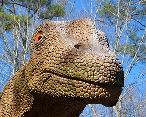 alamosaurus340659_s