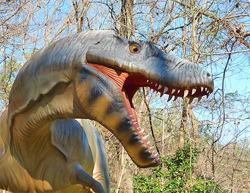 albertasaurus340650_s