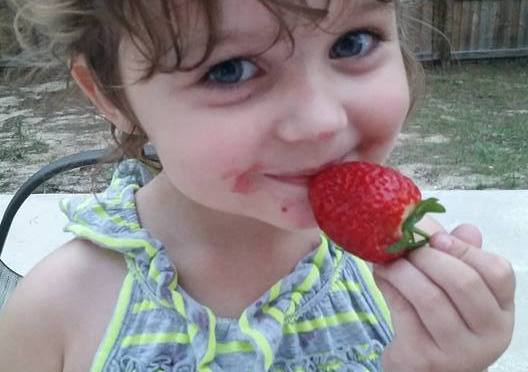 Upictopia Produce Update: Strawberries expected to run out this weekend