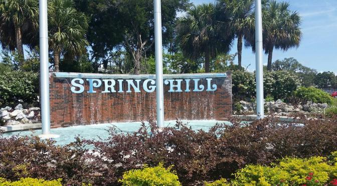 Spring Hill's Start & its Iconic Waterfall