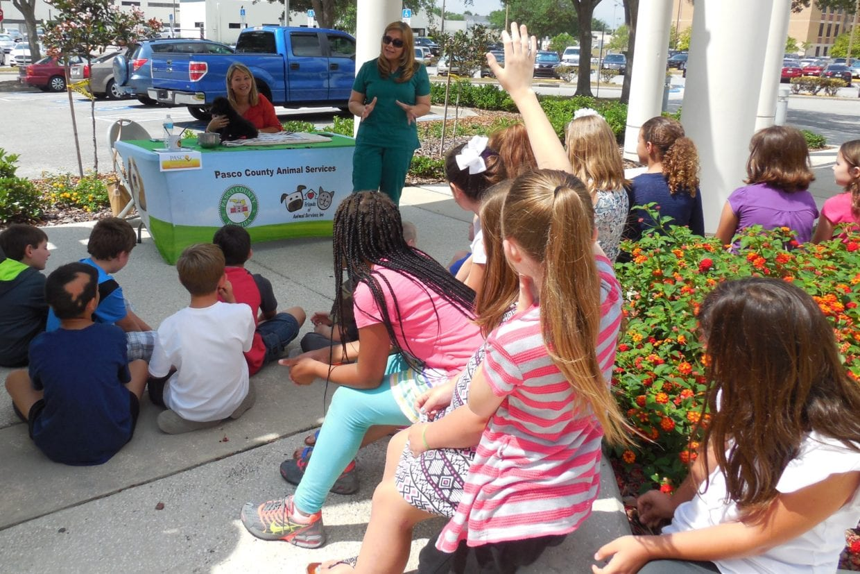 Stupendous Pasco County Schoolchildren Learn About Local Government Home Remodeling Inspirations Propsscottssportslandcom