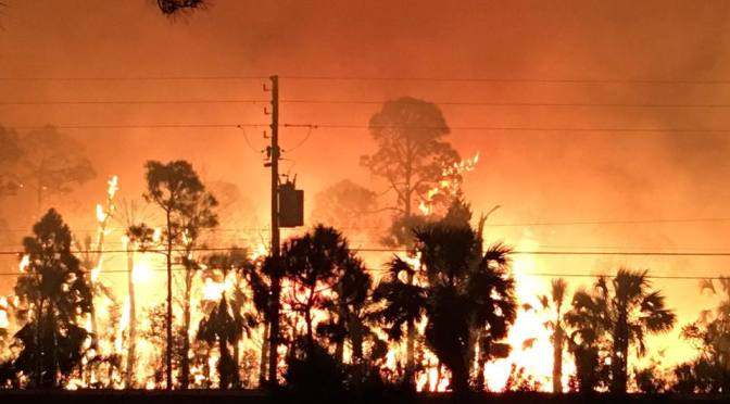 Hernando Beach Wildland Fire continues in the Weekiwachee Preserve