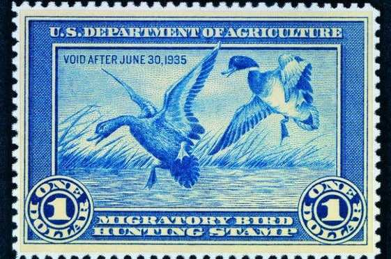 June 23 is release date for the 2017 Federal & Junior Duck Stamps