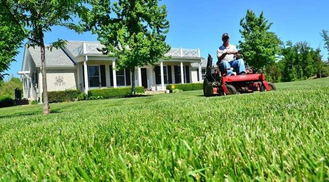 Two free Florida-friendly gardening workshops in July 2017