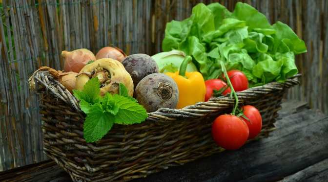 Master Gardener Class offers Online Sessions