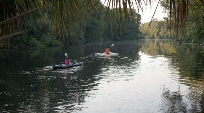 SWFWMD Board Approves Plans for Homosassa and Chassahowitzka Rivers