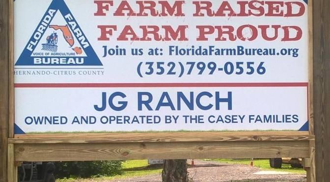 Happenings at JG Ranch