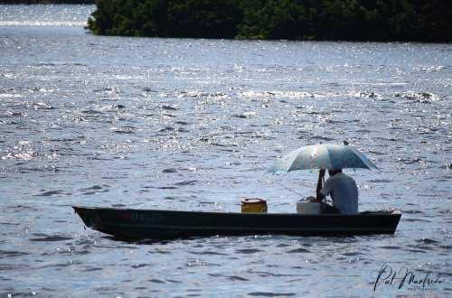 Gulf Fisherman