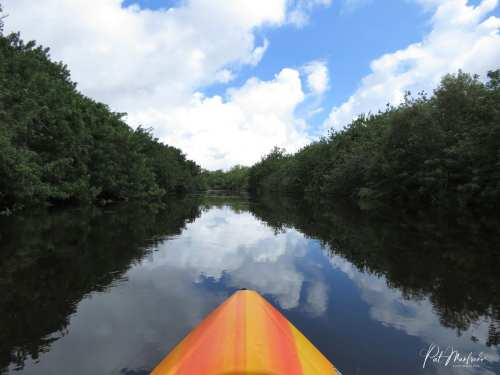 Peaceful Kayaking