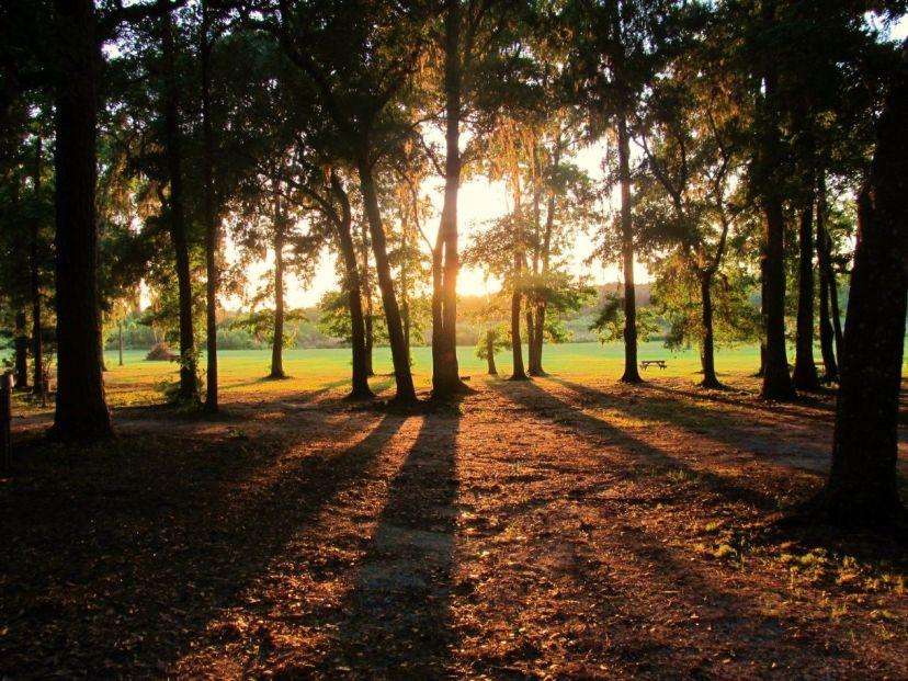 sertoma youth ranch sunrise