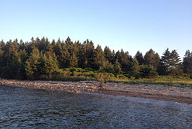 Rocky beaches on Mahone Bay, NS (Photo by MICA)