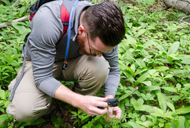 Cataloguing biodiversity on NCC properties is an important aspect of monitoring ecosystem health and alterations. Here, Mitchell MacMillan takes a photo of a plant to ID and record during an assessment on Holman's Island, PEI (Photo by Sean Landsman).