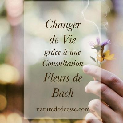 Change ta Vie grâce à une Consultation Fleurs de Bach