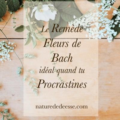 Ton Remède de Fleurs de Bach Idéal si tu Procrastines