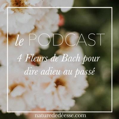 4 fleurs de Bach pour dire adieu au passé, tes blessures et tes vieilles habitudes