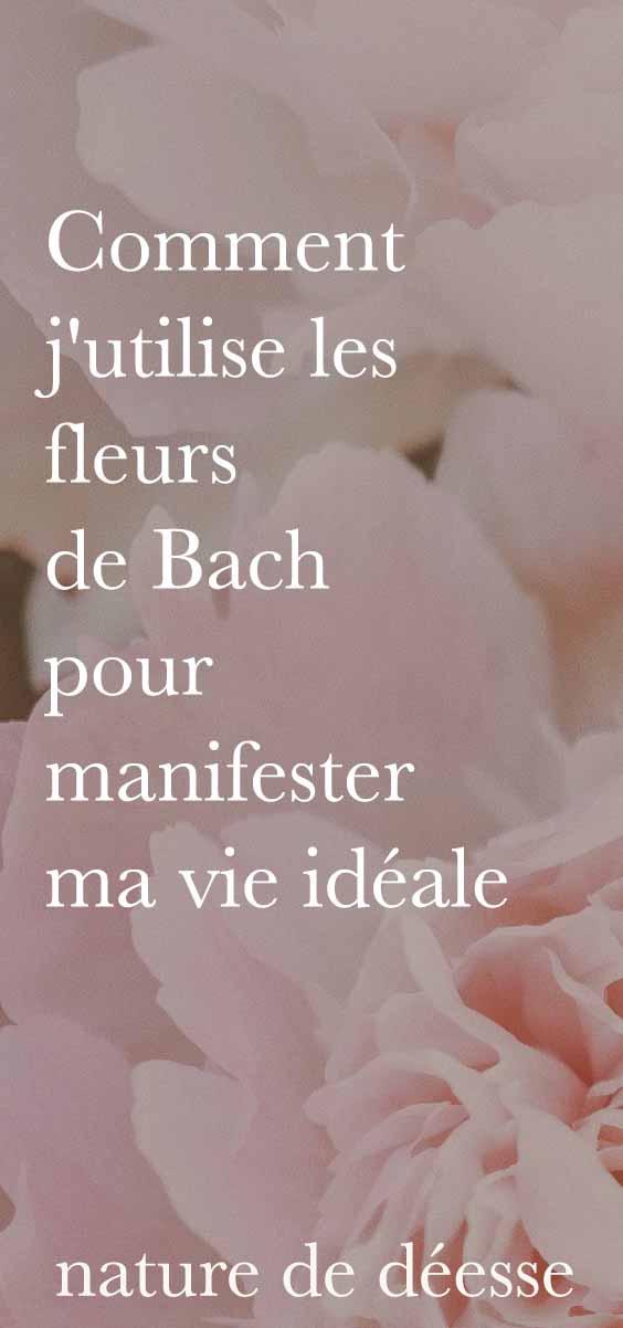 Pour aller au delà de la loi d'attraction, il y a les fleurs de Bach. Je t'explique comment manifester ta vie idéale facilement grâce aux élixirs floraux !