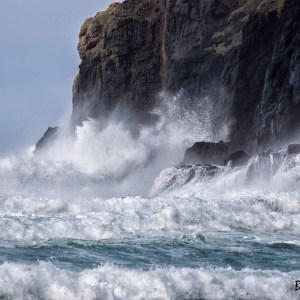 Nouvelle Zélande-Péninsule de l'Otago