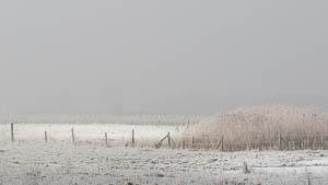 Les belles journées de givre et de neige sous le soleil hivernal