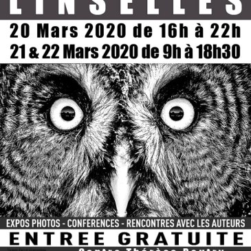 Annulation du festival photo de Linselles