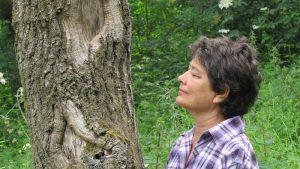 Formation en ligne sur les arbres