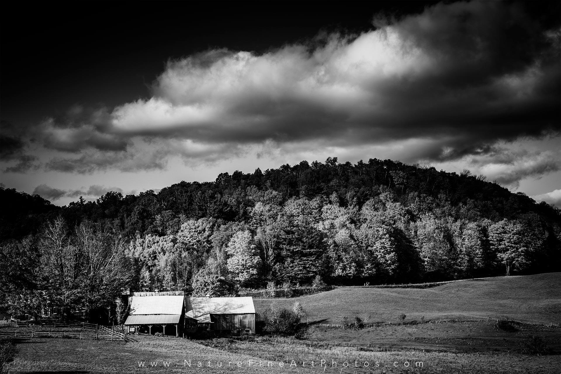 Black White Photo Vermont Barn Fall Foliage Nature Photos