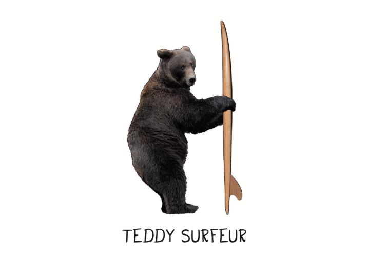 illustration-teddy-surfer