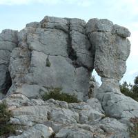 Sur la piste de l'éléphant de pierre
