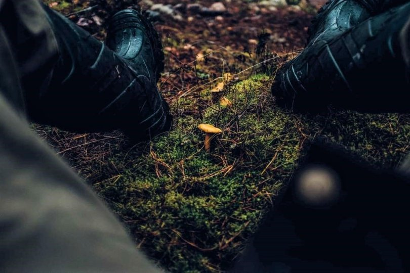Best Boots for Hunting