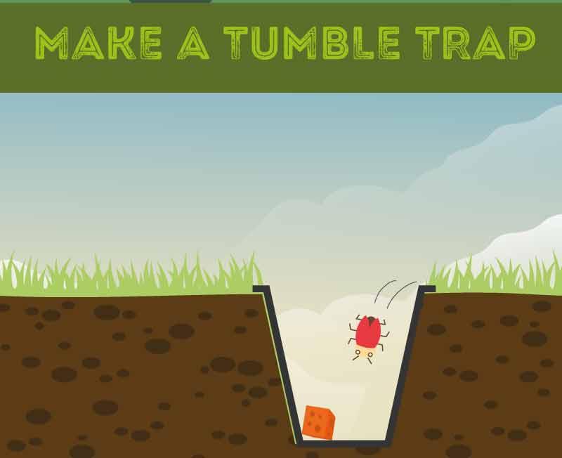 make-a-tumble-trap