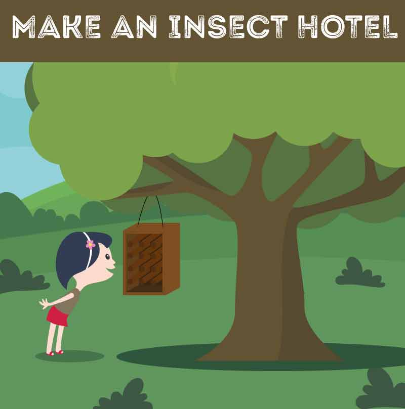 make-an-insect-hotel
